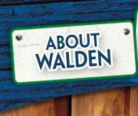 About Walden Summer Camp