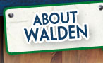 About Camp Walden